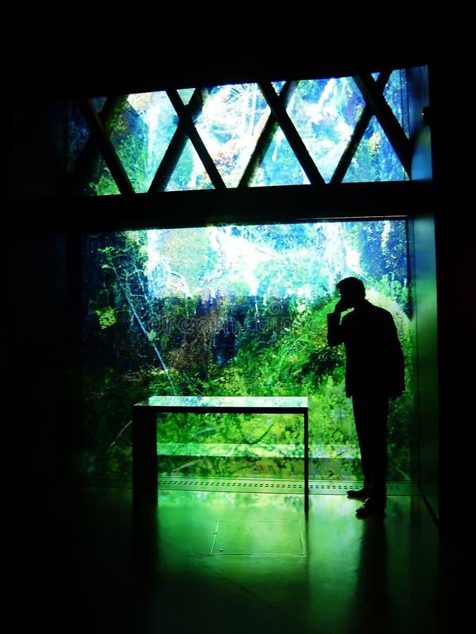 Бизнесмен на телефоне рядом с напечатанным стеклянным фасадом стоковая фотография rf