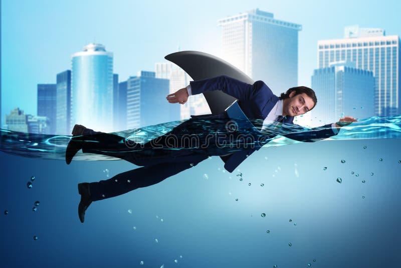 Бизнесмен с плаванием ребра акулы в воде иллюстрация вектора
