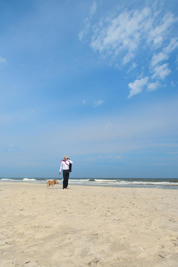 Бизнесмен с собакой на пляже стоковые фото