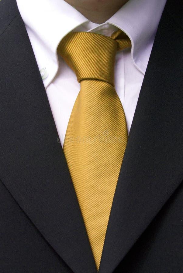 бизнесмен шикарный стоковые фотографии rf