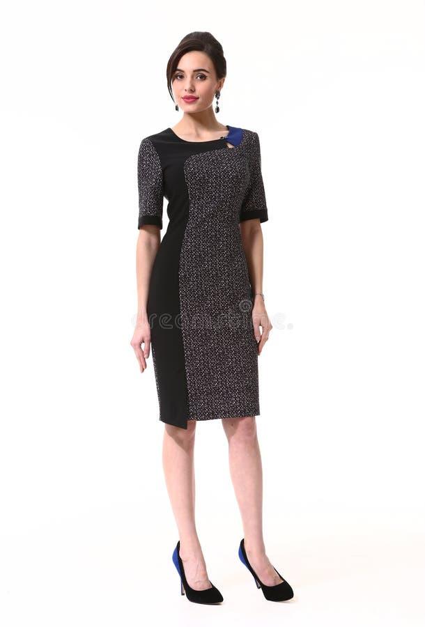 Бизнес-леди в официально платье стоковое изображение rf