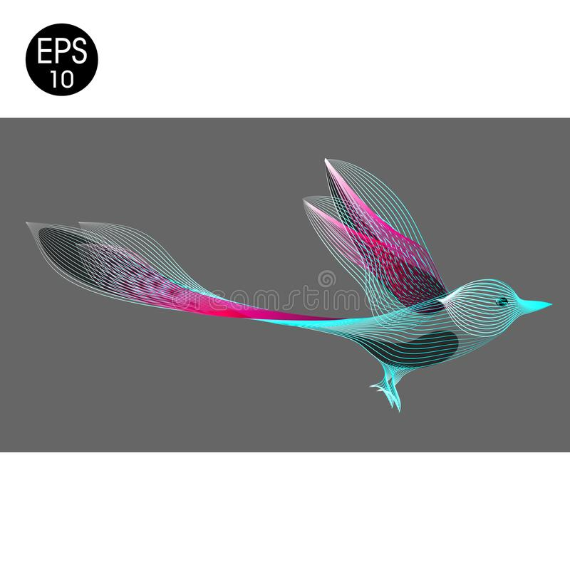 биографической Иллюстрация вектора экзотического колибри летания иллюстрация вектора