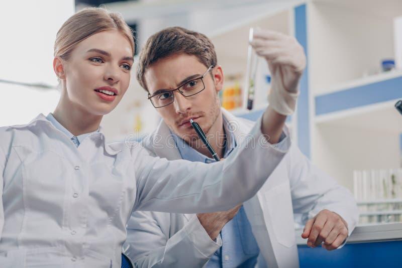 Биологи держа склянку с заводом стоковое изображение