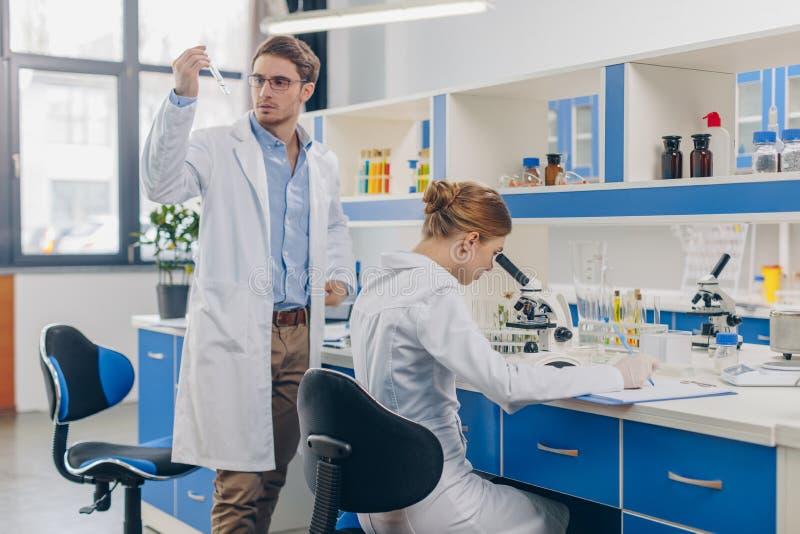 Биологи работая в лаборатории стоковые изображения