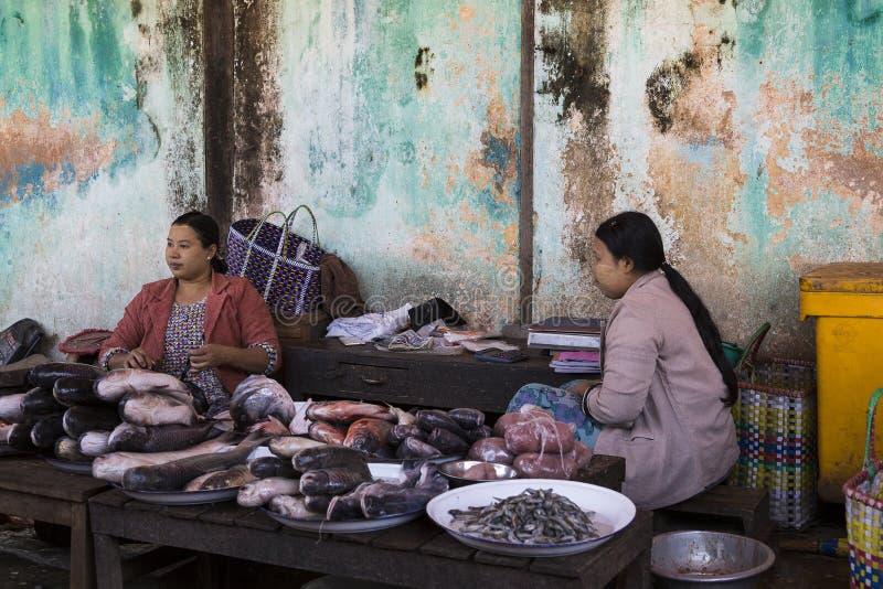 Бирманские женские поставщики рыб сидя за дисками свежих рыб стоковые фото