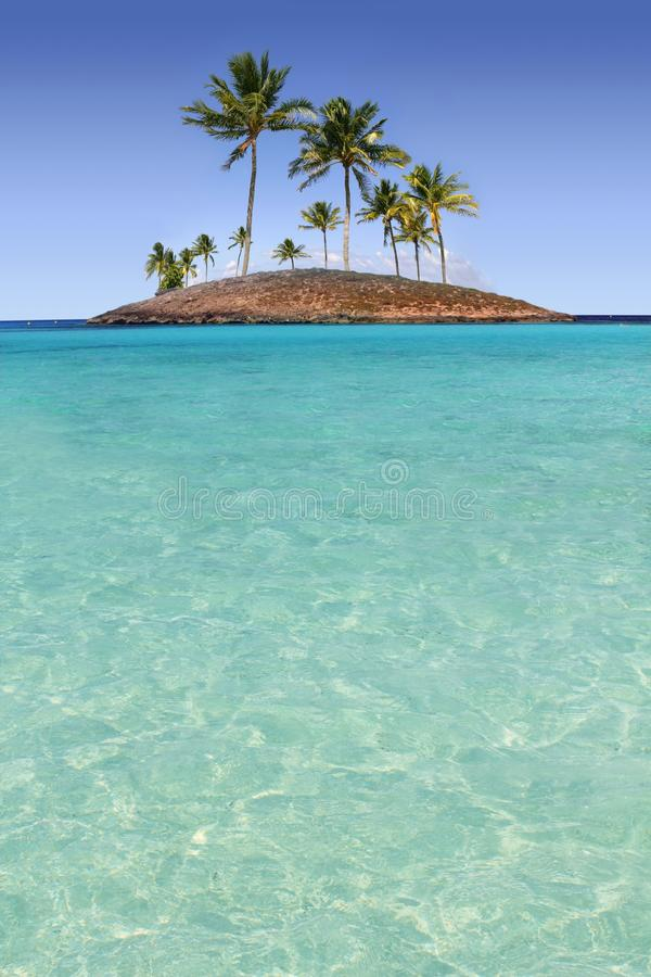 бирюза вала рая ладони острова пляжа тропическая стоковое фото rf