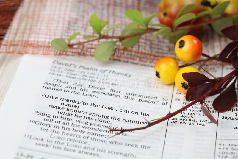 благодарение Священного писания стоковые фотографии rf