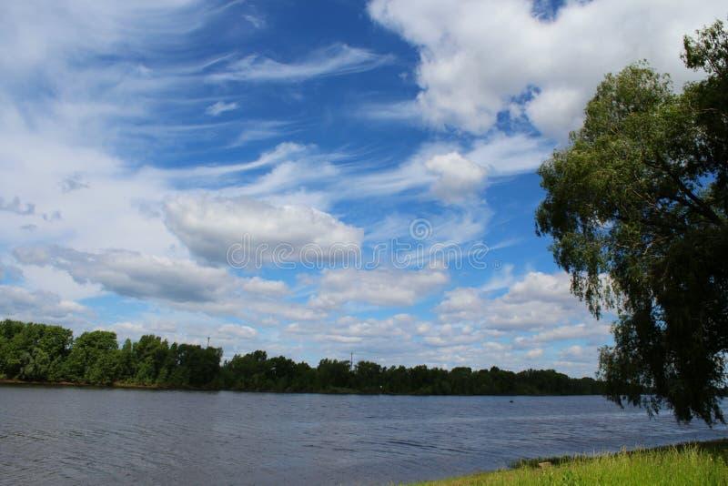 Благоустраивайте лето или поскачите с облаками, рекой и деревьями красивыми голубого неба белыми в дневном времени стоковые фото