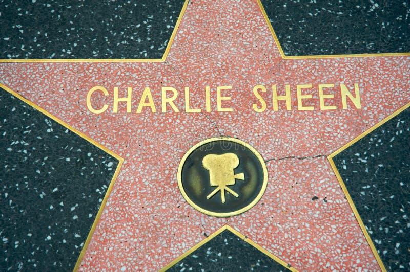 блеск Чарли стоковое фото rf