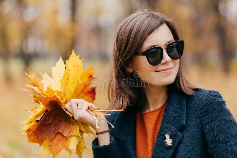 Близкая поднимающая вверх съемка милой женщины с волосами, носит солнечные очки, имеет прогулку во время солнечного дня в осени в стоковое изображение rf