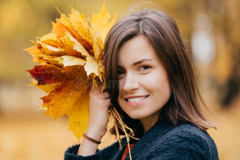 Близкая поднимающая вверх съемка милой женщины с качанным стилем причесок, зубастой улыбкой, наслаждается остатками во время выхо стоковая фотография rf