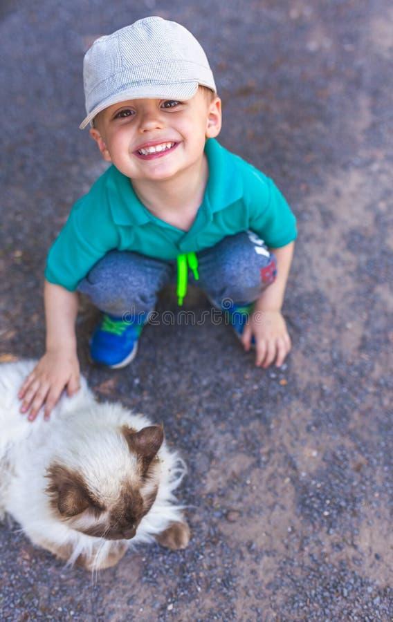 Близкие знакомства мальчика с котом стоковое изображение rf