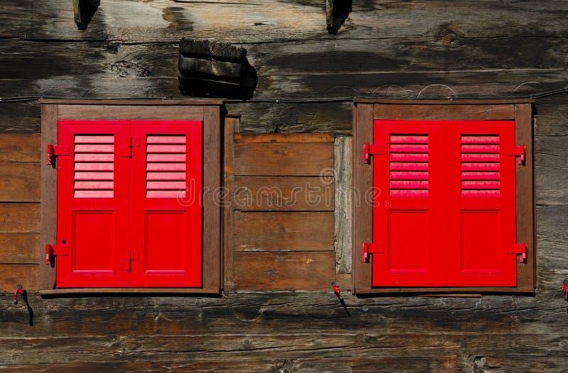 близкие красные штарки стоковое изображение rf