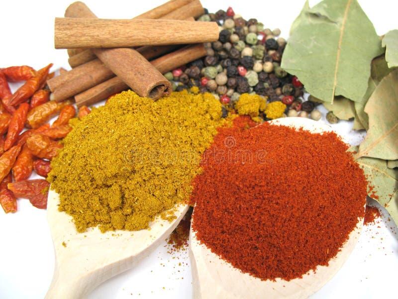 близкие травы spices вверх стоковое фото