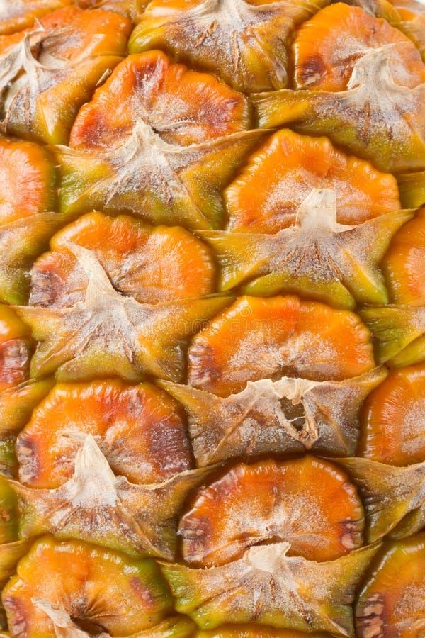 близкий ананас вверх стоковые изображения