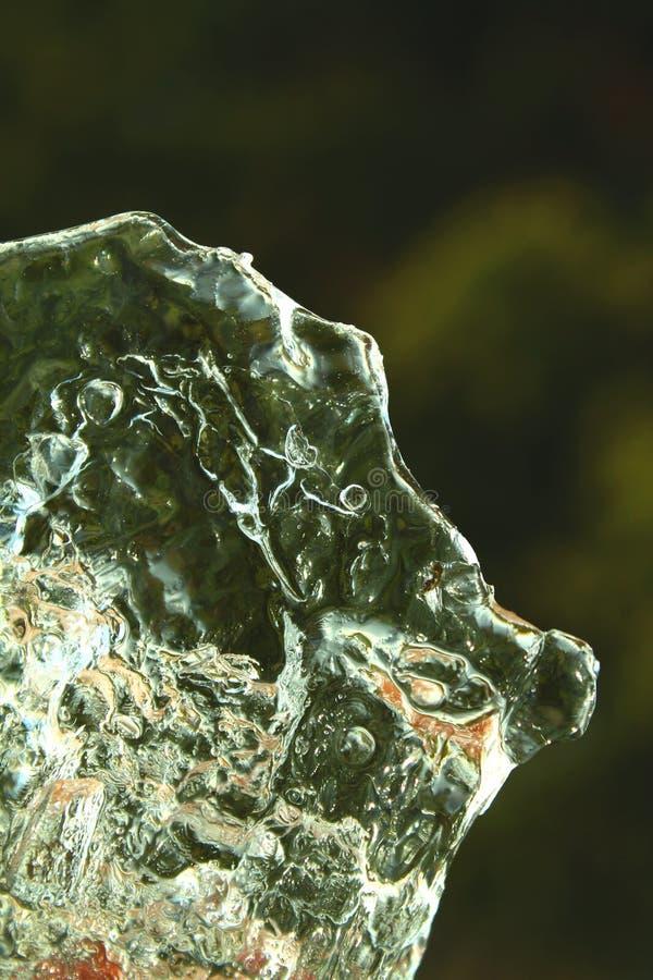 Близкий взгляд плавить ясный лед во время весны стоковые изображения rf
