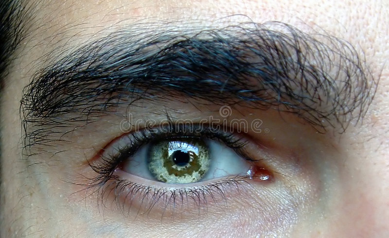 близкий глаз вверх стоковое изображение