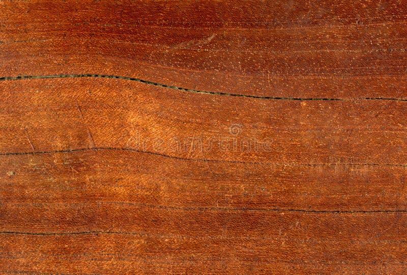 близкий макрос детали вверх по древесине стоковая фотография rf