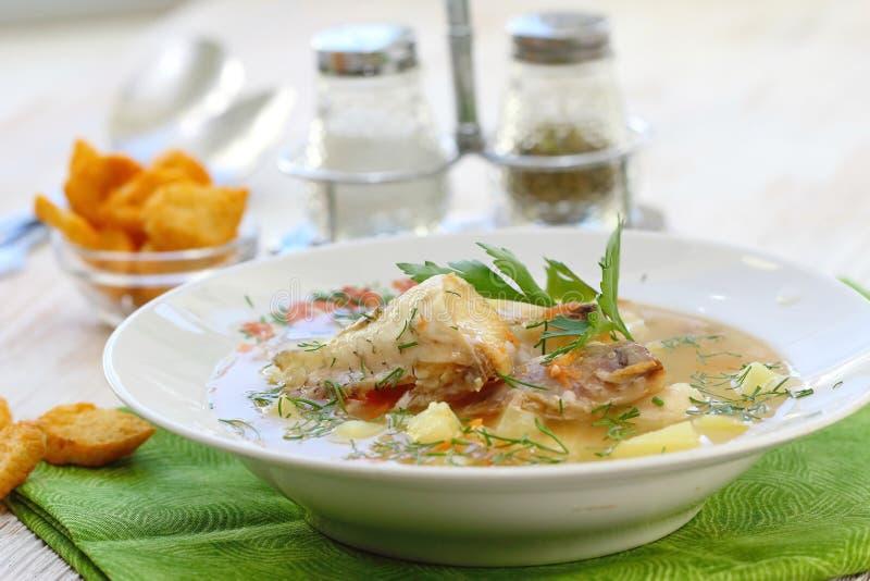 близкий суп съемки рыб вверх Очень вкусный суп с белыми рыбами стоковое изображение