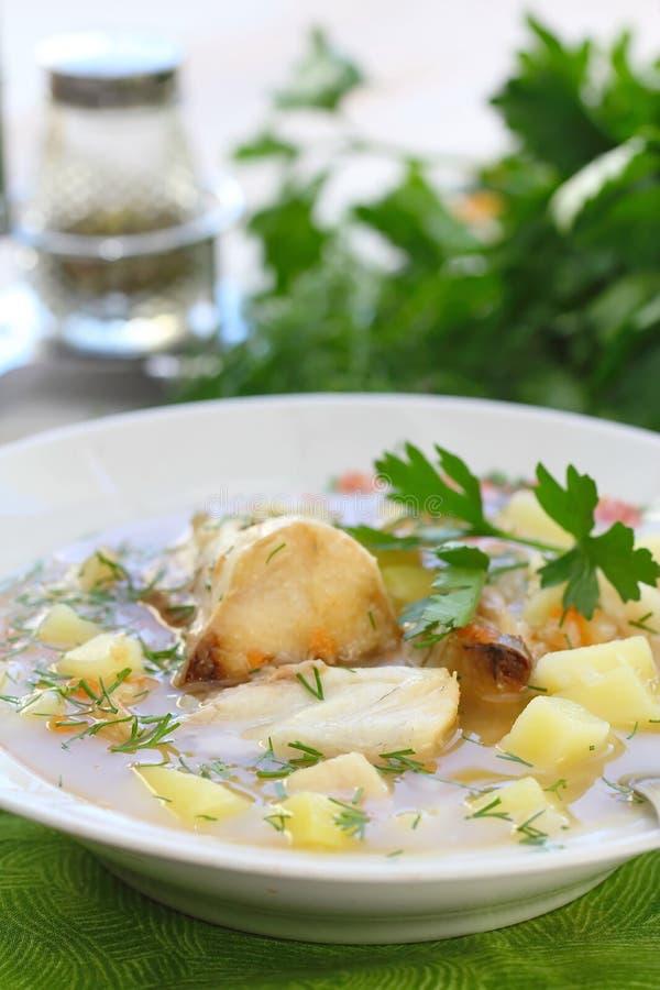 близкий суп съемки рыб вверх Очень вкусный суп с белыми рыбами стоковые изображения rf