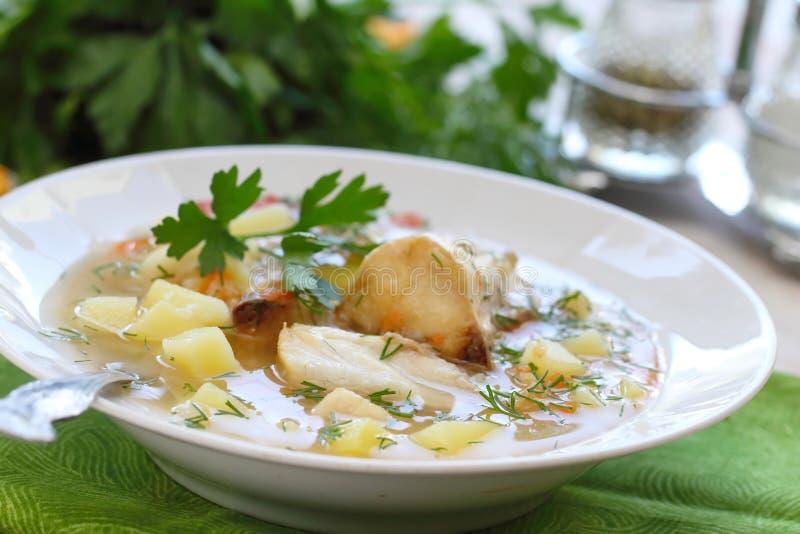 близкий суп съемки рыб вверх Очень вкусный суп с белыми рыбами стоковые изображения