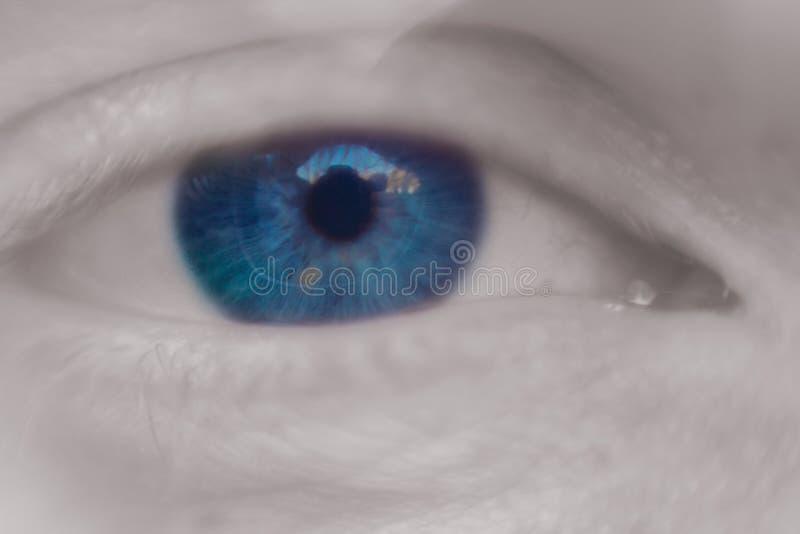 Близкое вверх изображение макроса человеческого глаза стоковое изображение rf