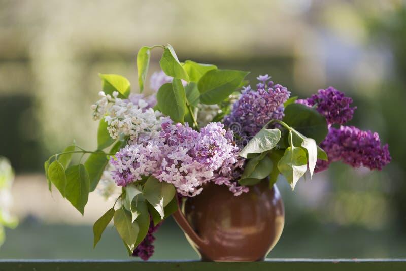 Близкое поднимающее вверх фото на счастливый день матери, с днем рождения с цвести ветвями сирени в вазе на зеленой таблице Весна стоковые изображения rf