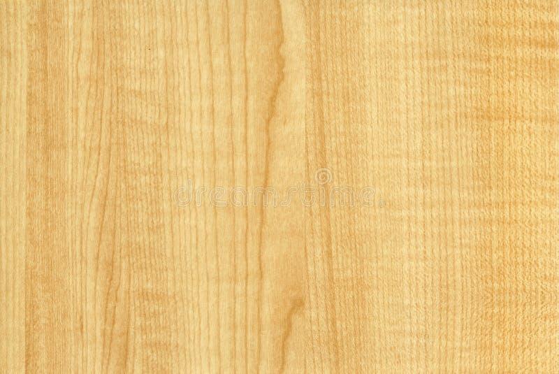 близкое thansau текстуры клена вверх по деревянному стоковая фотография