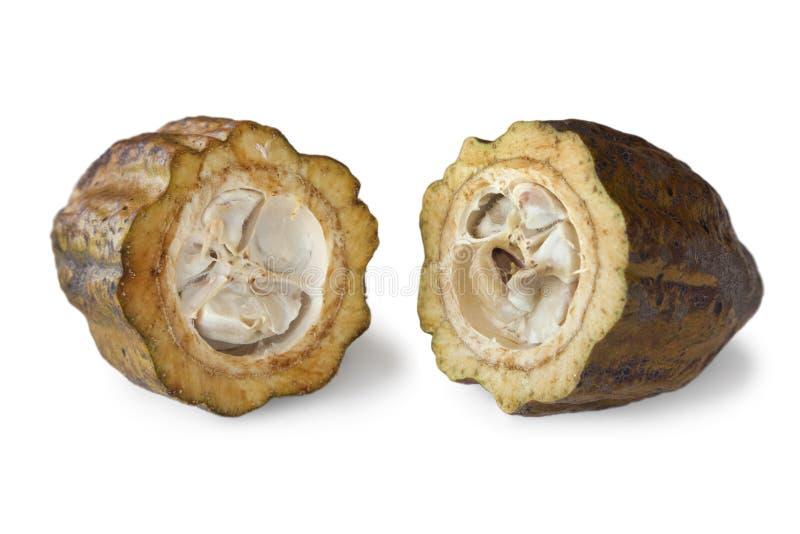 Бобы кака в стручке какао стоковая фотография rf