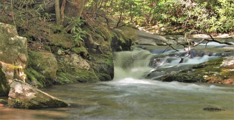 Богатая заводь горы в каменном парке штата горы стоковое фото rf