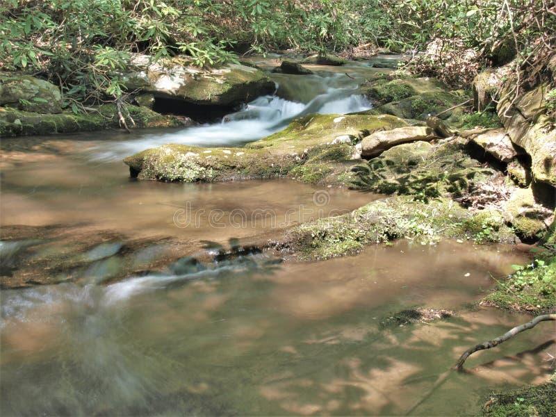 Богатая заводь горы в каменном парке штата горы стоковые изображения rf