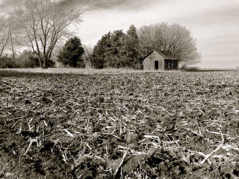 Богатая, черная почва поля фермы Иллинойса после сбора стоковое фото rf