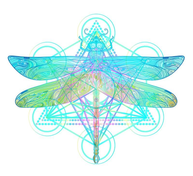Богато украшенный dragonfly над красочной круглой картиной мандалы Этническое Пэт иллюстрация штока