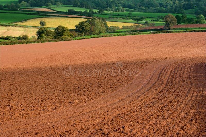 богачи земли стоковое фото rf