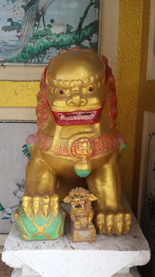 Боги льва стоковые фотографии rf