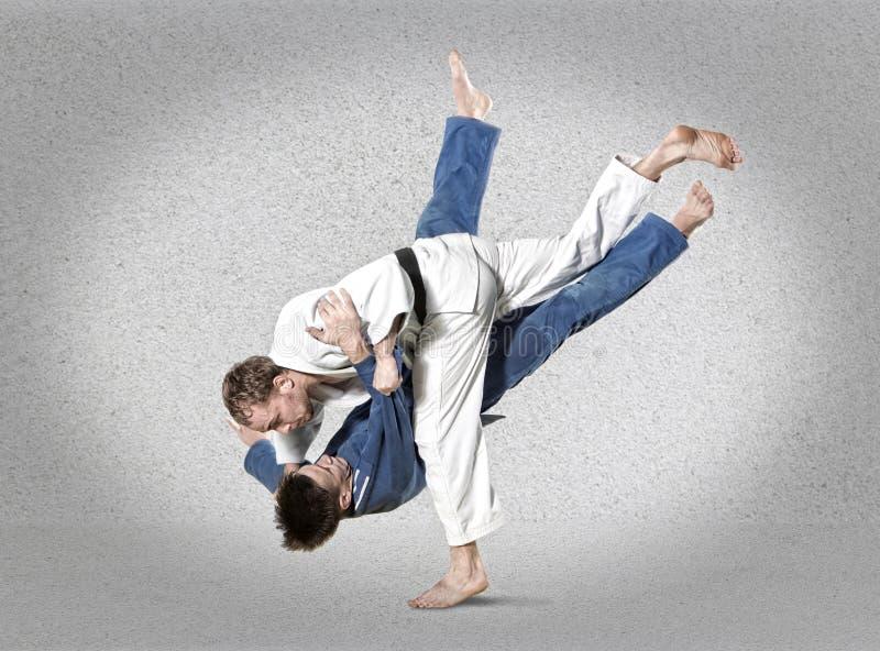 2 бойца judokas воюя людей на сером цвете стоковое фото