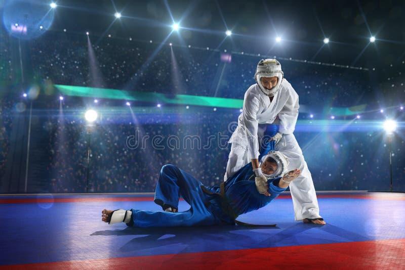 2 бойца kudo воюют на грандиозной арене стоковая фотография rf
