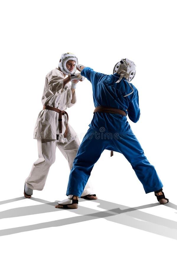 Бойцы Kudo изолированный бой стоковые изображения rf