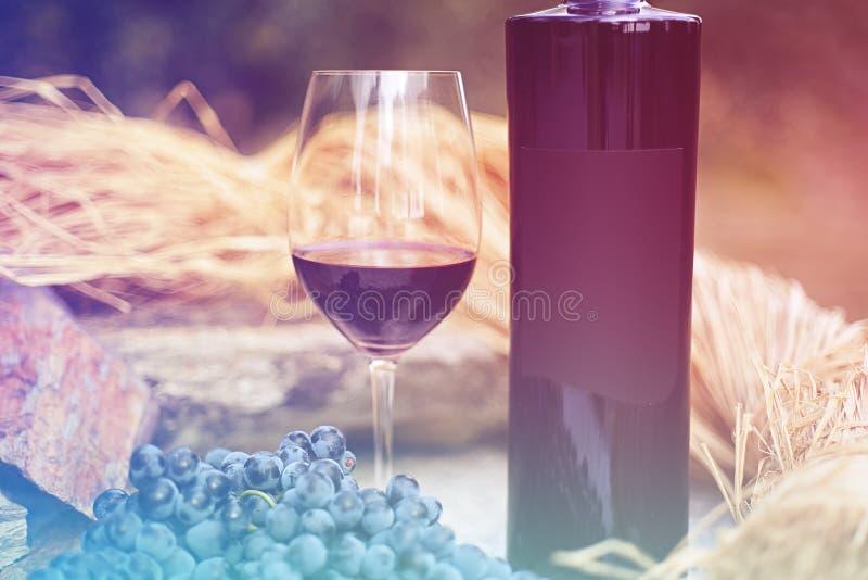 Бокал вина при бутылка окруженная виноградинами стоковое фото rf