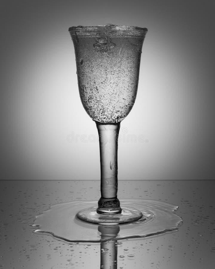 Бокал с сверкная водой стоковые фотографии rf