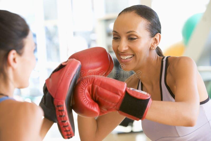 бокса гимнастики женщины совместно стоковое изображение