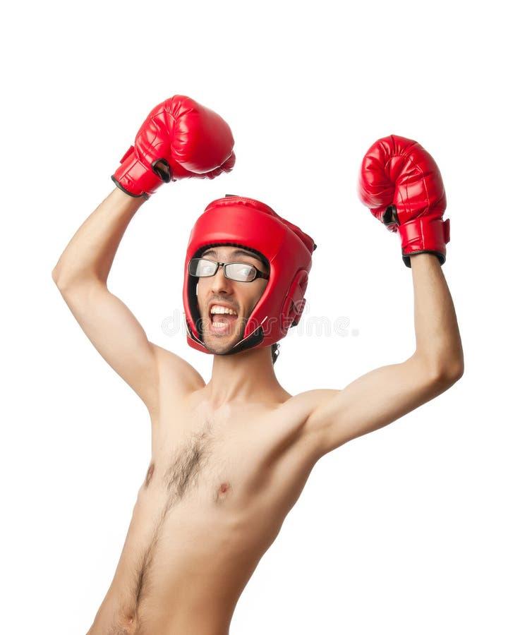боксер смешной стоковое изображение rf