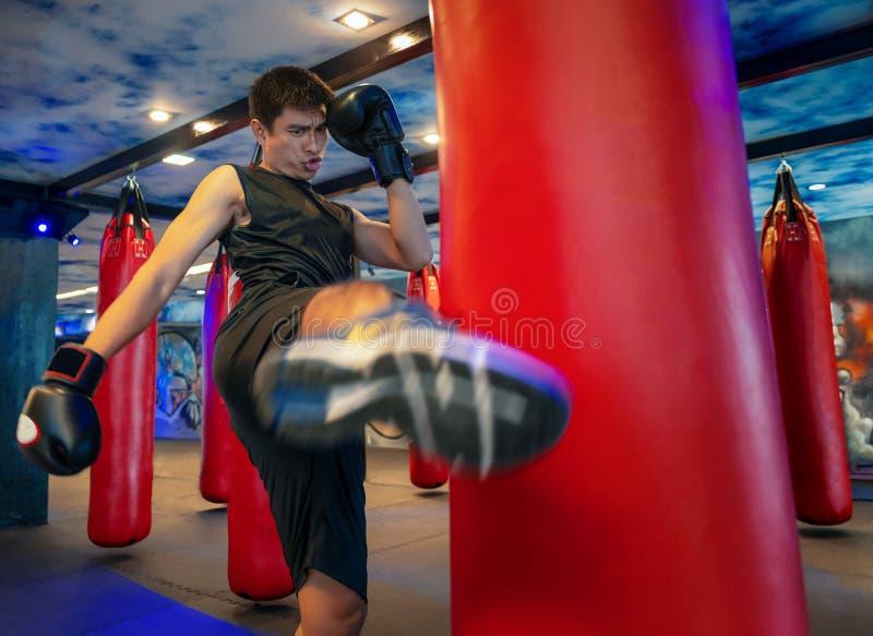 Боксер человека ударяя огромную грушу на кладя в коробку студии Боксер человека тренируя крепко Тайский пинок пунша боксера груше стоковые изображения rf