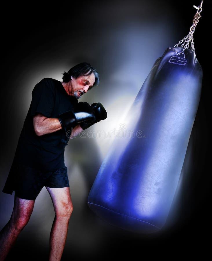 боксер стоковые фото
