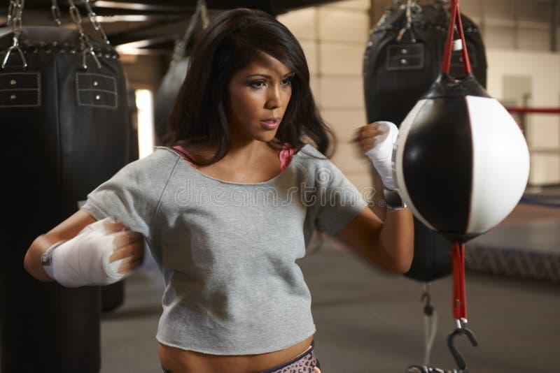 Download Бокс красоты Latina стоковое изображение. изображение насчитывающей испанец - 40588353