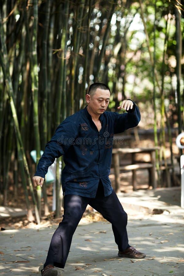 Бокс taiji игры человека стоковое изображение rf