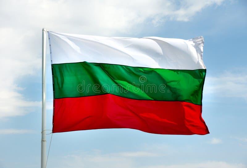 болгарский флаг стоковая фотография rf