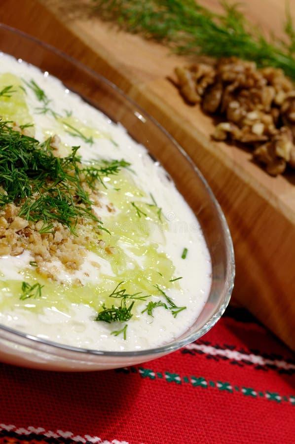 болгарское холодное tarator супа щавеля традиционное стоковые фото