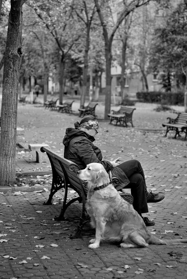 Более старая женщина сидя на скамейке в парке с ее верноподданическим товарищем стоковые фотографии rf