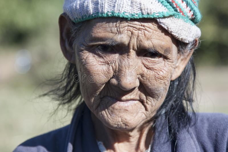 более старая женщина стоковые изображения